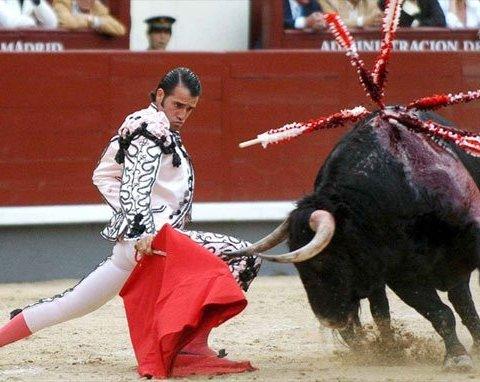 Стала відома кількість постраждалих від забігу з биками в Іспанії