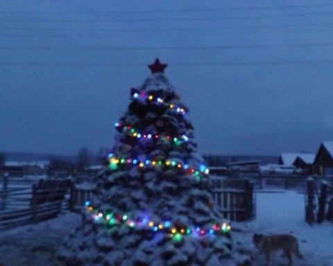 »Новогодняя елка» из навоза: сеть поразили развлечения россиян (фото)