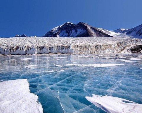 Несподівана знахідка в Антарктиді шокувала науковців