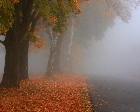 Тепло і тумани: якою буде погода з понеділка