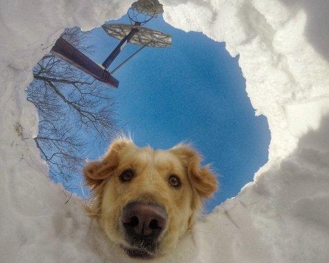 Дождь и мокрый снег: какой будет погода в Украине завтра