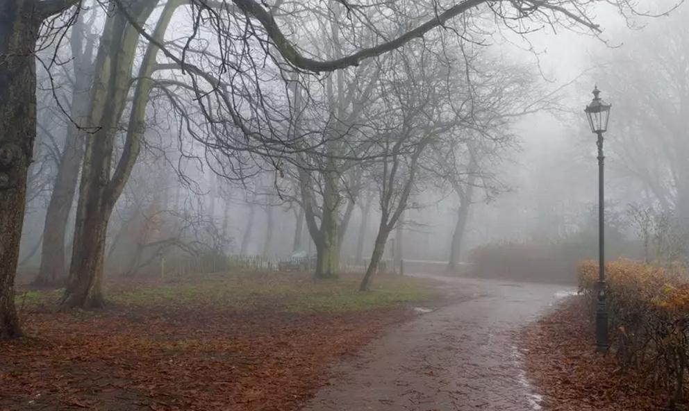 Погода науикенд: украинцев согреет влажный воздух изЕвропы