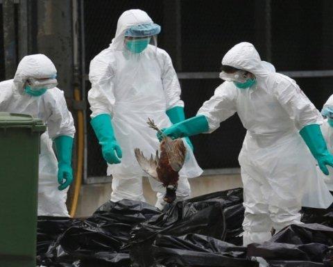 Новий смертельний штам грипу масово шириться планетою