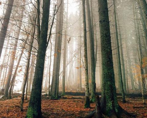 Краса неймовірна: блогер вразила світ фотографіями українських пейзажів