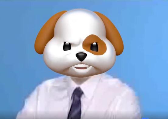 Панда Саакашвілі і пес Добкін: політиків перетворили на тварин