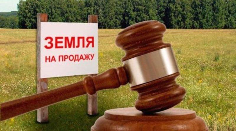 Мораторій на продаж землі: у Зеленського зробили амбіційну заяву