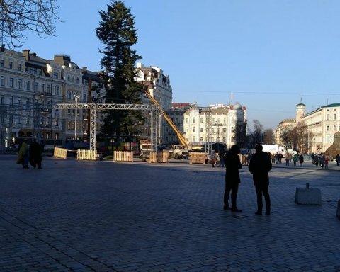 Украинцы возмущены главной елкой страны