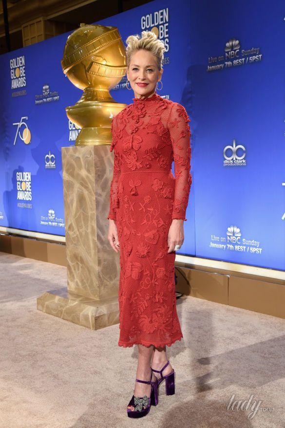 Шэрон Стоун в роскошном платье поразила фанатов
