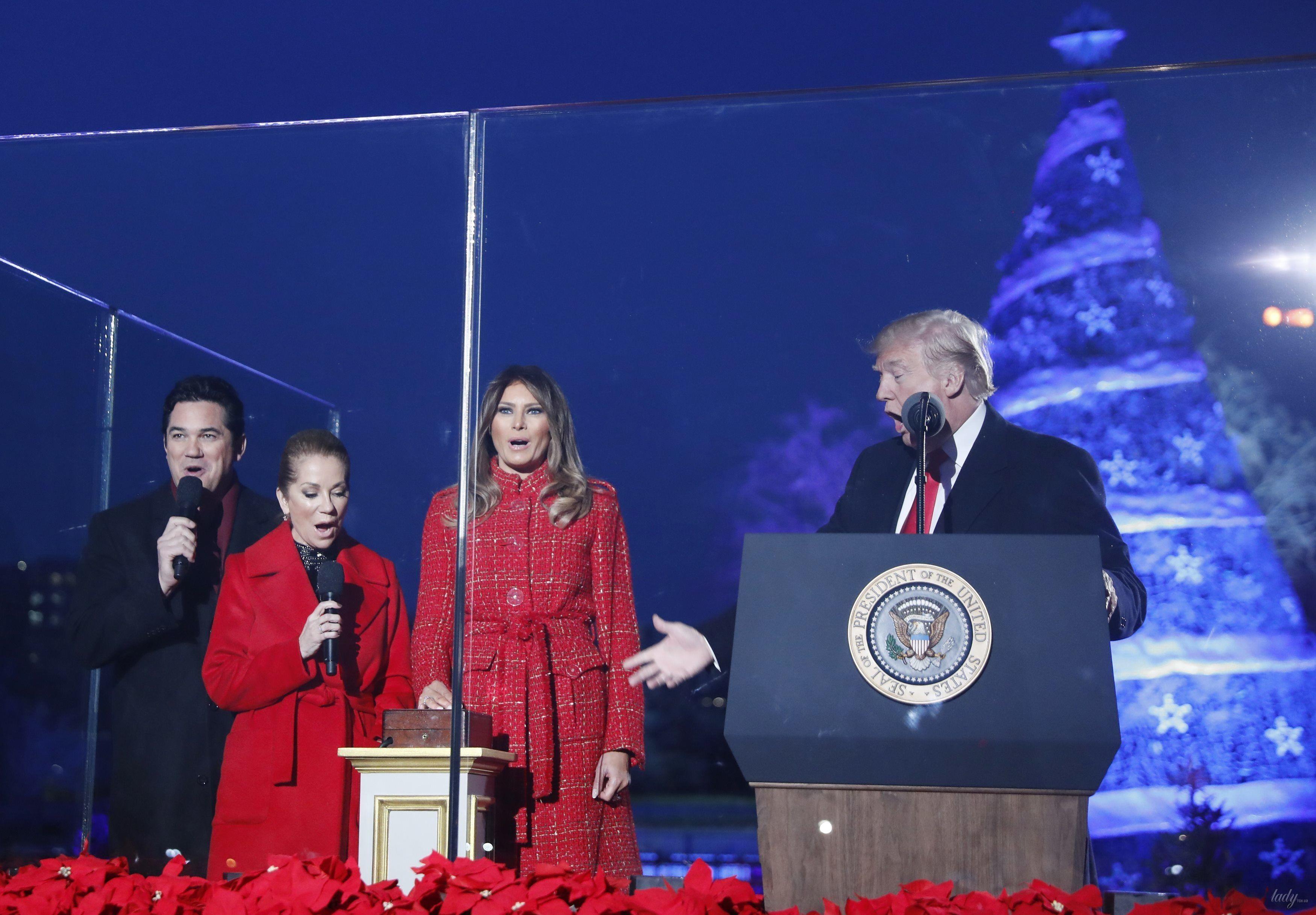 Трамп зажег огни на основной рождественской елке вСША