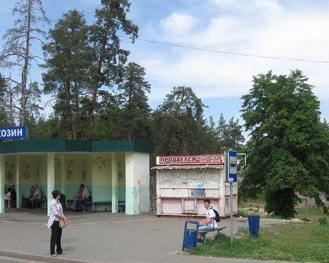 Елітні авто, казкові будинки: українцям показали село депутатів і олігархів під Києвом (відео)