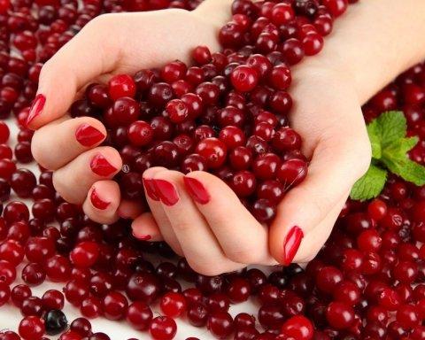 Медики назвали идеальную для здоровья ягоду