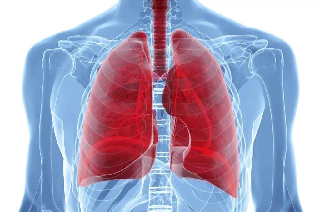 Медики назвали первые симптомы рака легких