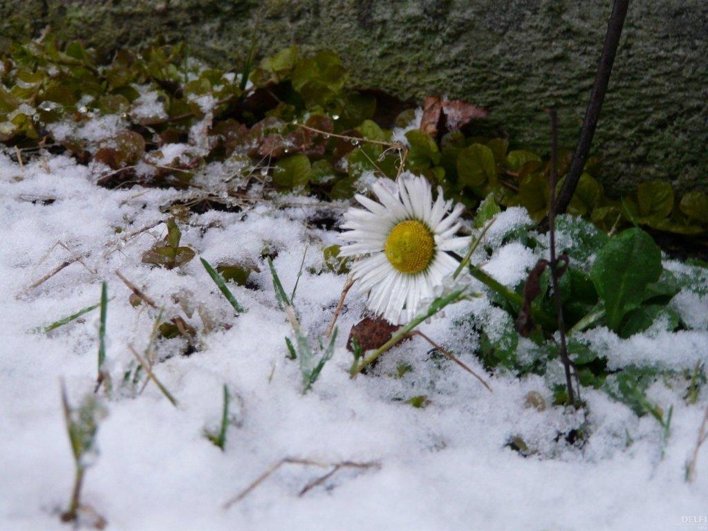 Морозы днем и ночью: синоптики дали неожиданный прогноз на март