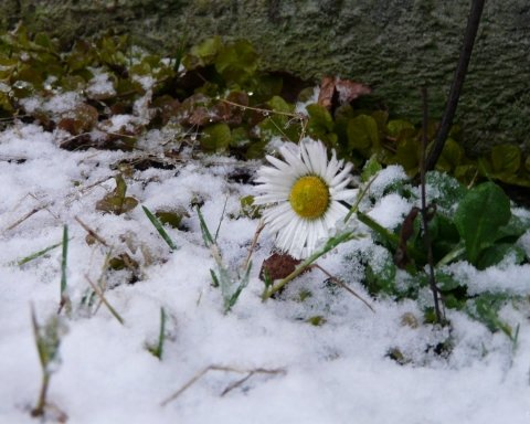 Морози вдень та вночі: синоптики дали несподіваний прогноз на березень