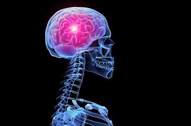 Як змусити свій мозок працювати на повну силу