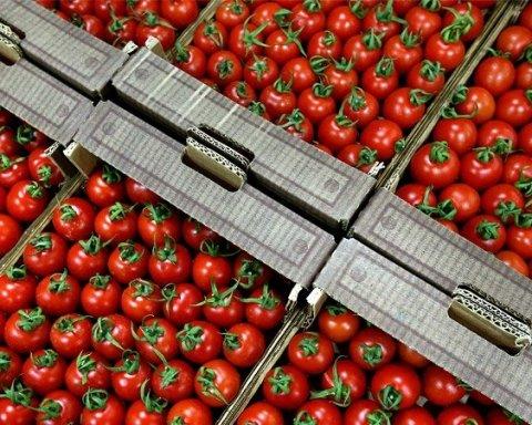 Небезпечні помідори із міллю викрили у Києві