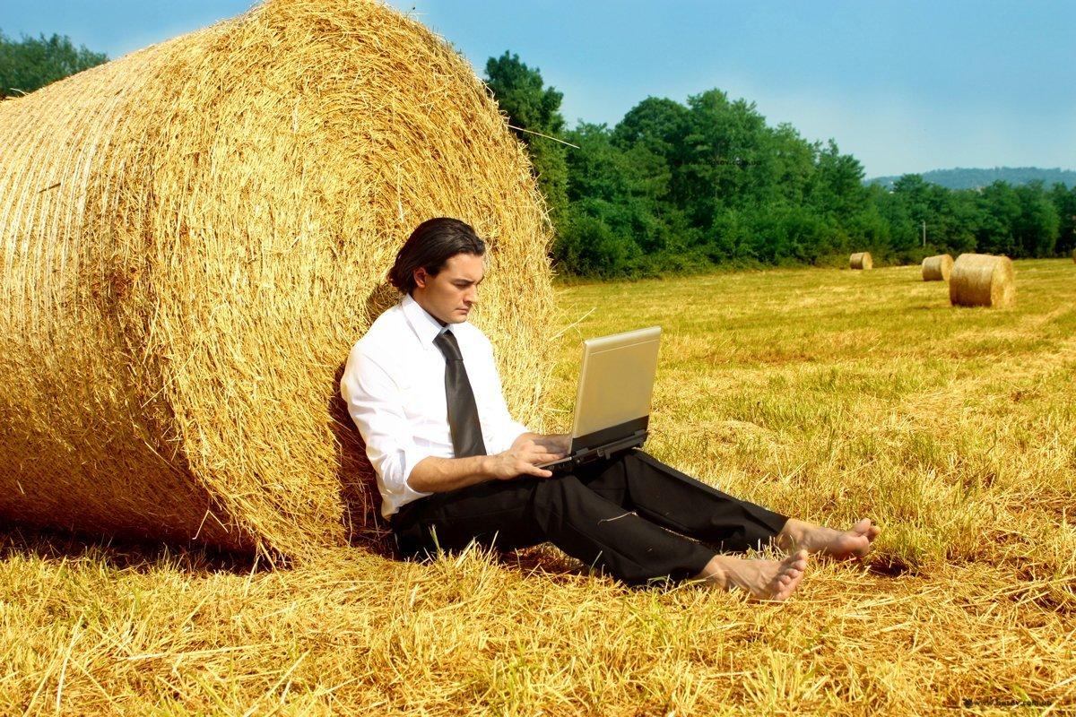 Чому офіс – не найкраще місце для продуктивної роботи