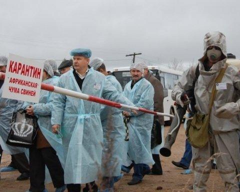 В двух областях Украины зафиксирована вспышка африканской чумы свиней
