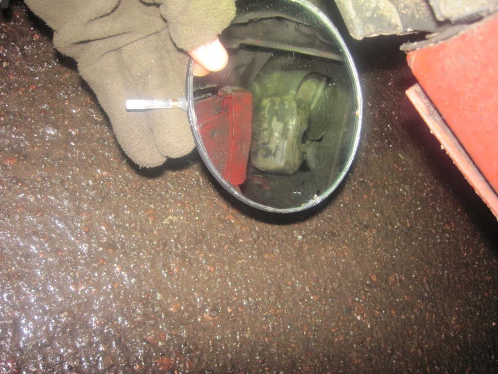 Службовий собака виявив зброю в автомобілі, що в'їжджав з Росії