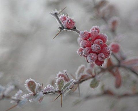 Коли в Україні буде мороз: синоптик назвала дату