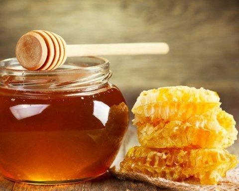 Украина показала невиданный рост экспорта меда