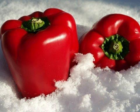 Стало известно, какие овощи больше всего подорожали в январе