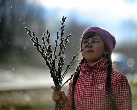 До +20 градусів: українців потішили прогнозом погоди