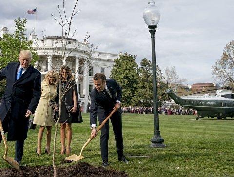 Макрон посадил дуб во дворе Белого дома (видео)
