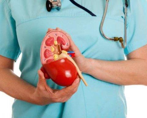 Ці звички швидко вбивають нирки