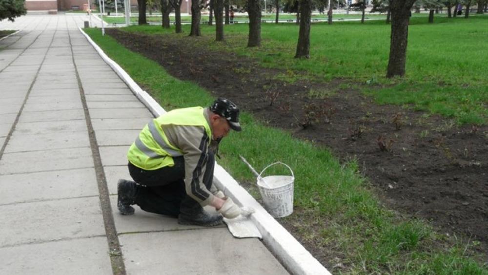 Белить деревья в Киеве запретили: стали известны причины