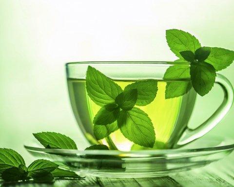 Назвали удивительные свойства мятного чая