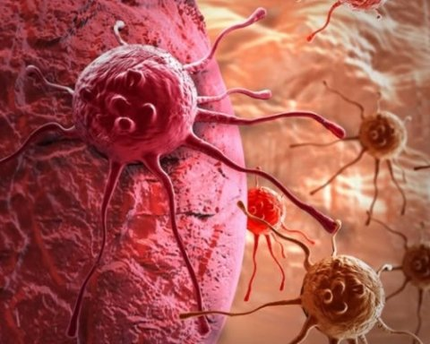 Ученые нашли простой метод лечения онкологии