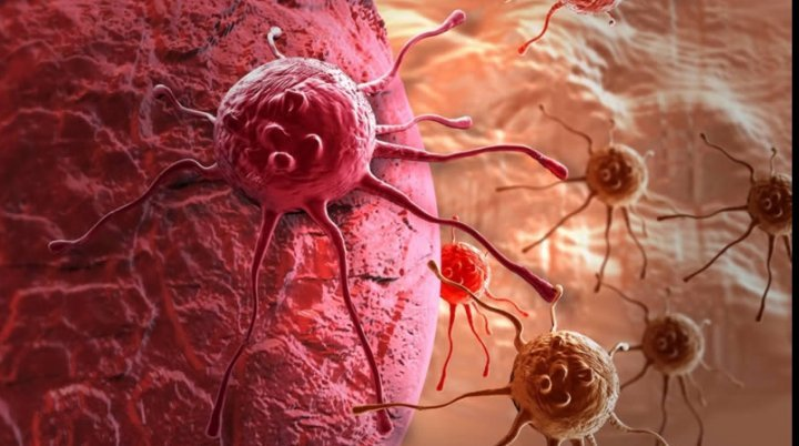 Знайдено революційний спосіб знищення раку: як це працює