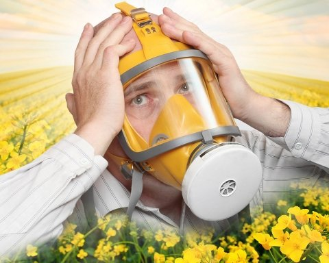 Названо регіони України, в яких найбільше потерпають алергіки