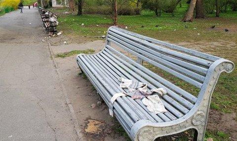 За выходные киевляне создали настоящую свалку в столичном ботсаду