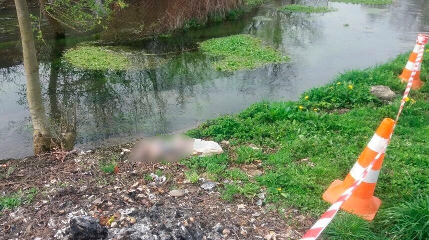 Загорнула в поліетиленовий пакет: горе-мати втопила власну дитину у річці
