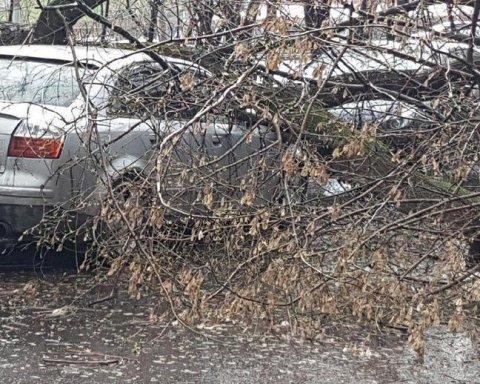 Потужний ураган в Росії: є жертви