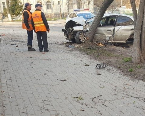Жуткое ДТП: пьяный водитель врезался в остановку и снес два дерева