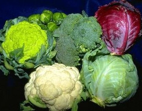 Назвали найкращий овоч проти високого тиску