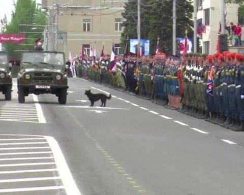 """Бойовики """"ДНР"""" не обійшлися без конфузу на """"параді"""""""