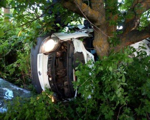Микроавтобус врезался в дерево: пятеро погибших
