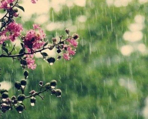 Очередная порция дождей: синоптик назвала дату, когда вернется тепло