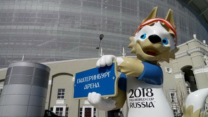 Россиянам запретят жарить шашлыки на время Мундиаля