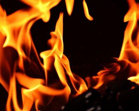 Лісові пожежі в Росії: дим від вогнища огорнув частину Казахстану