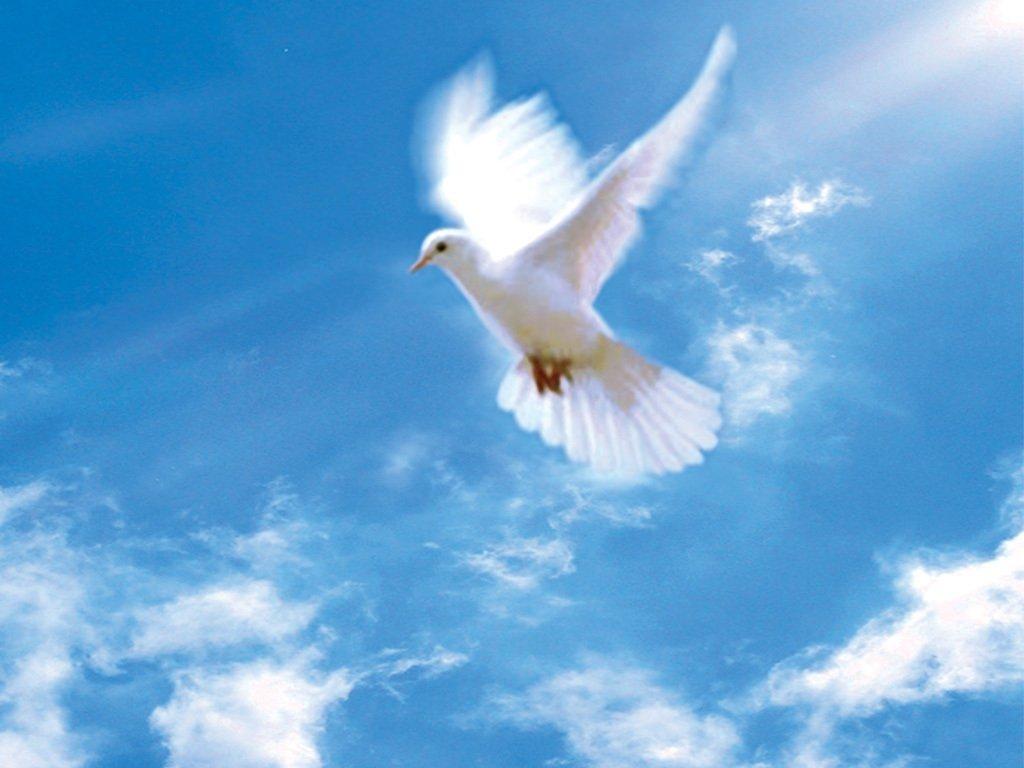 День Святого Духа: чого не варто робити в цей день