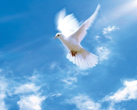День Святого Духа 2020: чого не варто робити в цей день