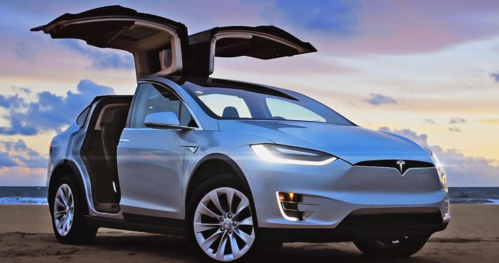 Под Одессой таможенник купил три Tesla задва года— Семейный подряд