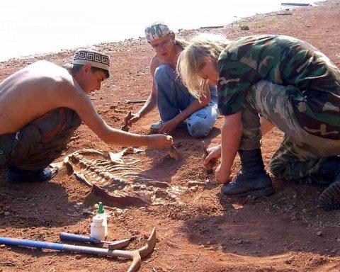 Обнаружены неизвестные ранее звероподобные рептилии