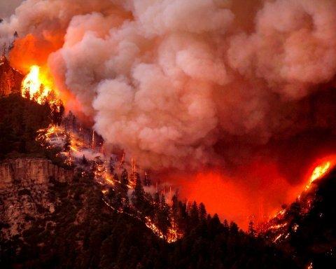 В США бушуют лесные пожары: люди покидают дома (фото)