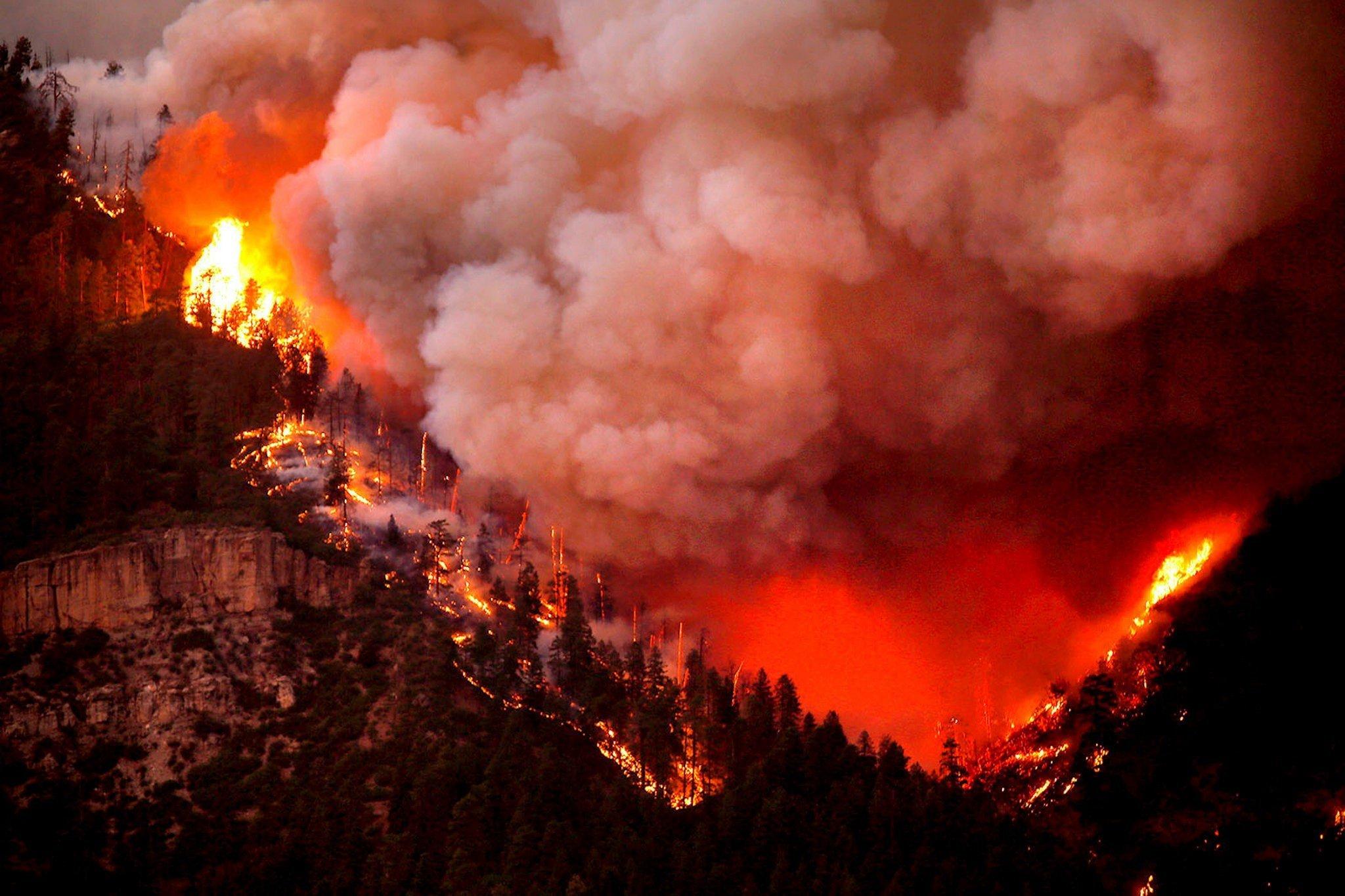 У США вирують лісові пожежі: люди залишають домівки (фото)